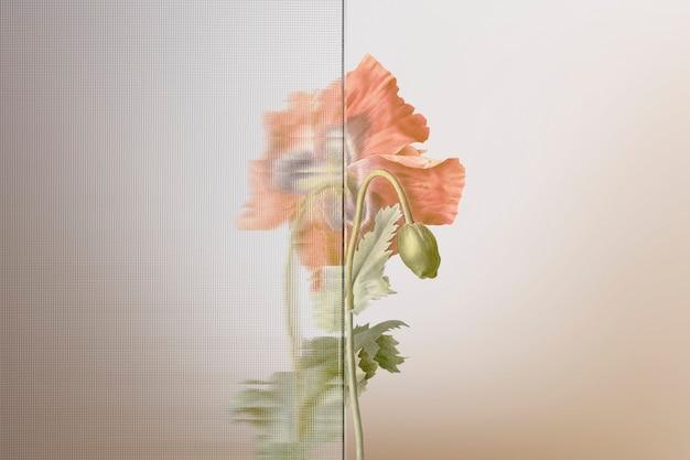 Sfondo della natura con fiore dietro un vetro modellato