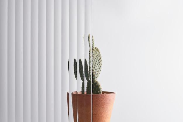 Sfondo della natura con foglia dietro un vetro modellato