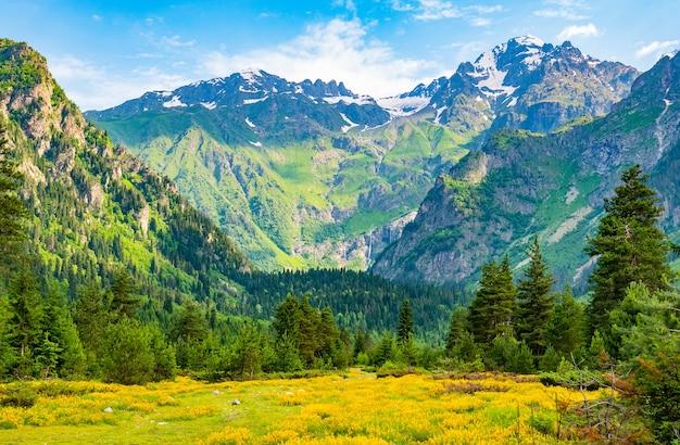 Природа фон с горами, полем полевых цветов и голубым небом
