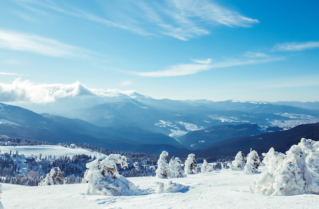 Nature. beautiful winter landscape with snow covered trees. beautiful view of the mountains from a high point.