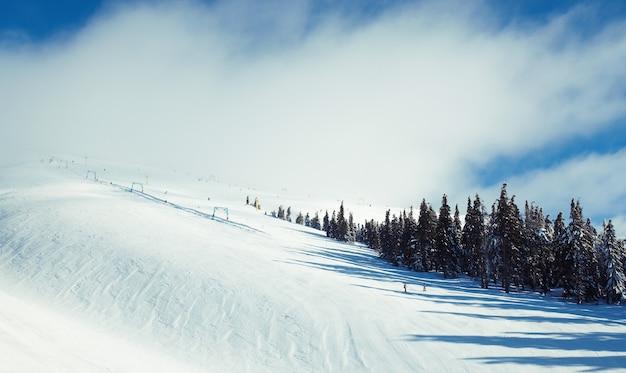 自然。雪に覆われた木々と美しい冬の風景。高いところからの山々の美しい景色。