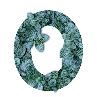 Nature concept alphabet of green leaves in number zero shape