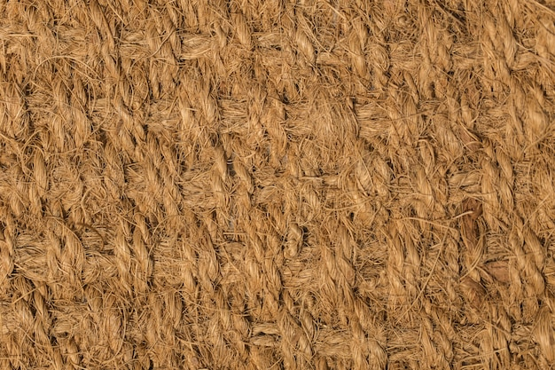 Nature fiber texture from coconut