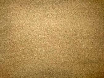 Nature Golden Sand Closeup Concept