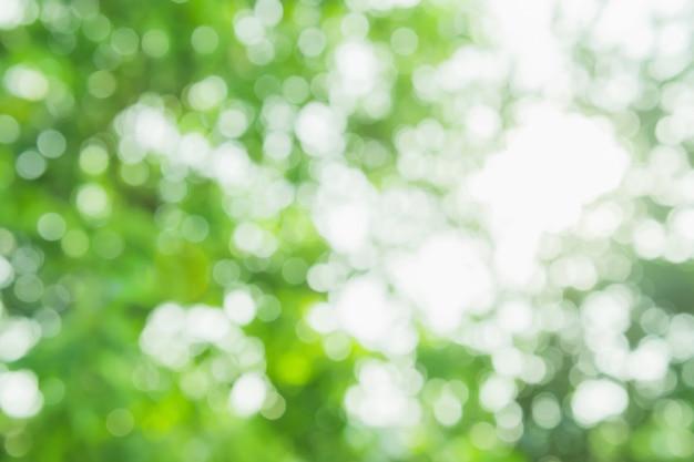 Nature green blurred