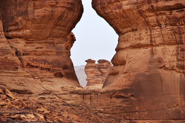 サウジアラビアのアルウラに近い砂漠の自然