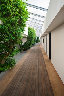 Nature inside the building, corridor and foliage