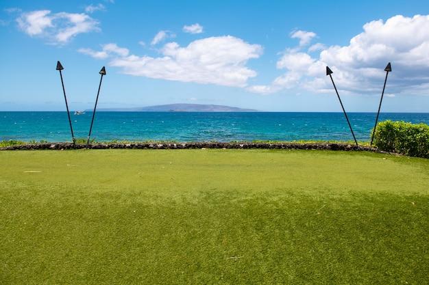 透き通った海のヤシの木とハワイの熱帯のビーチの自然の風景