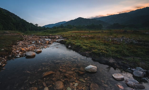 Nature landscape view of fresh water stream with the background of mountain and forest