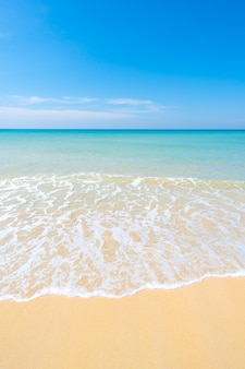 아름답고 천상의 해변의 자연 풍경 보기