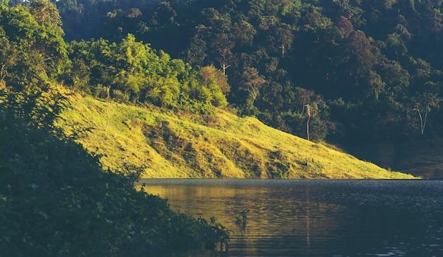 열대 우림, 카오 야이 국립 공원, 태국의 자연 풍경보기