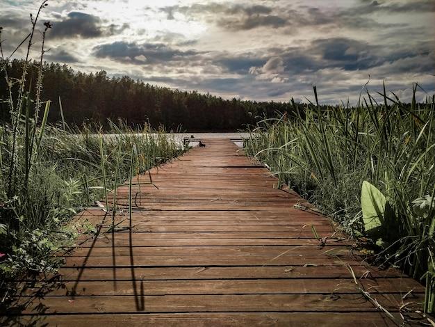 나무 판툰 푸른 잔디 호수와 비가 오기 전 흐린 하늘이 있는 자연 풍경