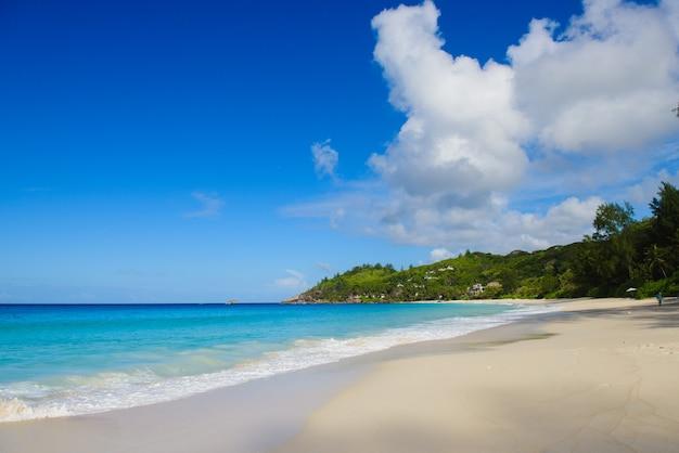 모래, 바다, 녹색 언덕이있는 자연 환경