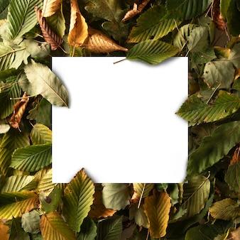 Природа минимальная concept.creative сделанный макет - зеленые, желтые и оранжевые листья фон с белым пустым примечанием карточки чистого листа. плоская планировка. осенний урожай. вид сверху