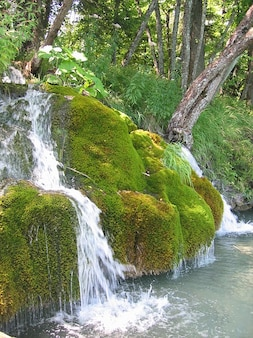 Nature moist landscape moss water bach waterfall