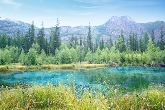 Nature mountain scene with beautiful lake and mountains in summer or autumn day. national park in altai republic, siberia, russia