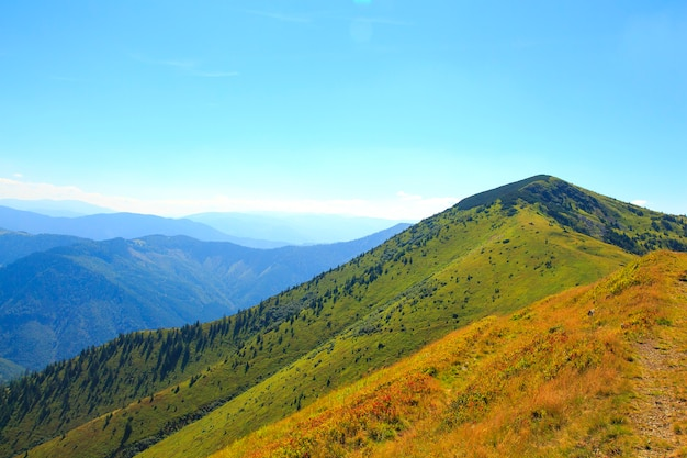 Nature in the mountains, beautiful scenery, beautiful mountain scenery, the carpathian mountains.