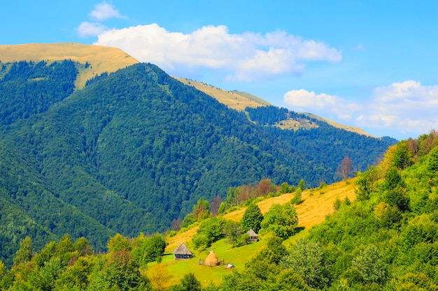Nature in the mountains, beautiful scenery, beautiful mountain scenery, the carpathian mountains