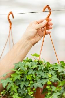 자연은 당신의 보살핌이 필요합니다. 남자 매달려 식물의 자른 이미지