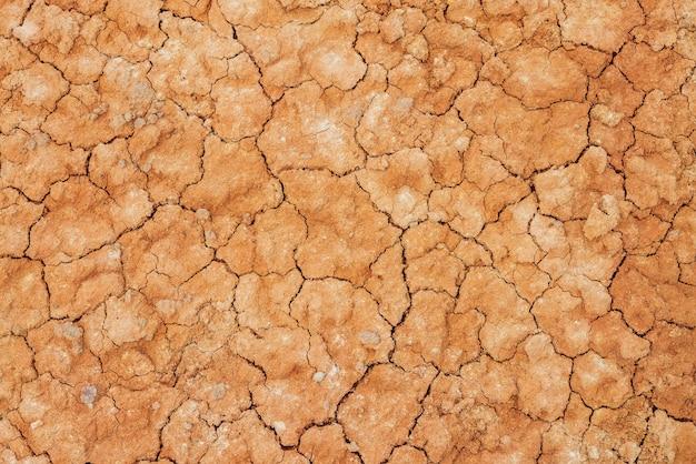 Природа засушливых земель с трещинами.