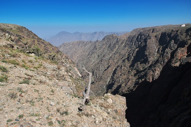 Природа гор хиджаз рядом с городом таиф в провинции мекка саудовская аравия
