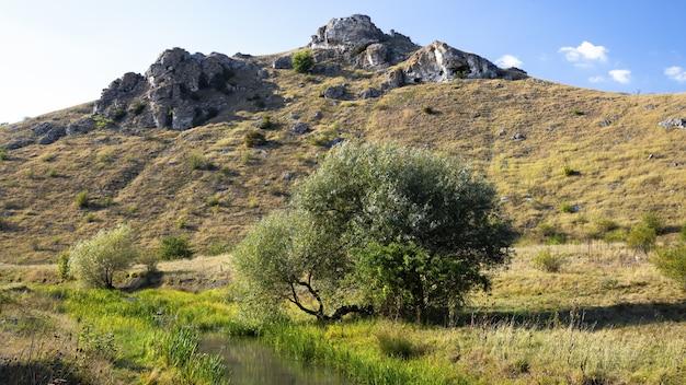 モルドバの自然、岩だらけの斜面とまばらな植生のある丘
