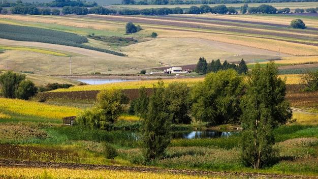 モルドバの自然、2つの湖、緑豊かな木々、播種された畑、水の近くの家のある谷