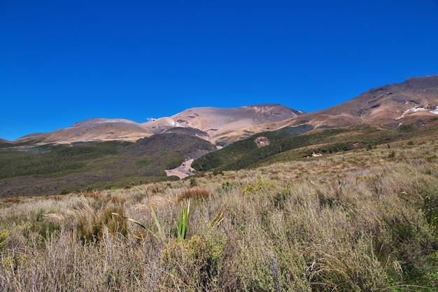 ニュージーランドのトンガリロ国立公園の自然