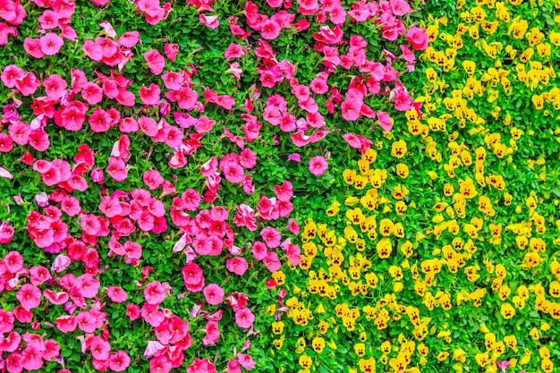 自然のオレンジ色の庭の葉公共白