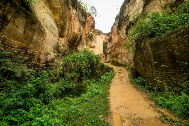 石灰岩の採掘の丘の古代の職場の池の水と自然屋外公園