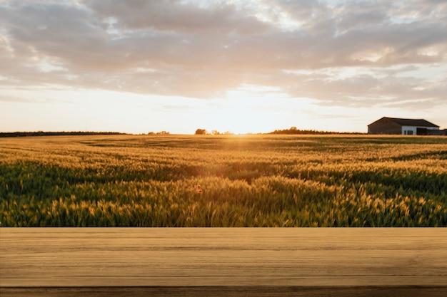 자연 제품 배경, 농장 및 햇빛