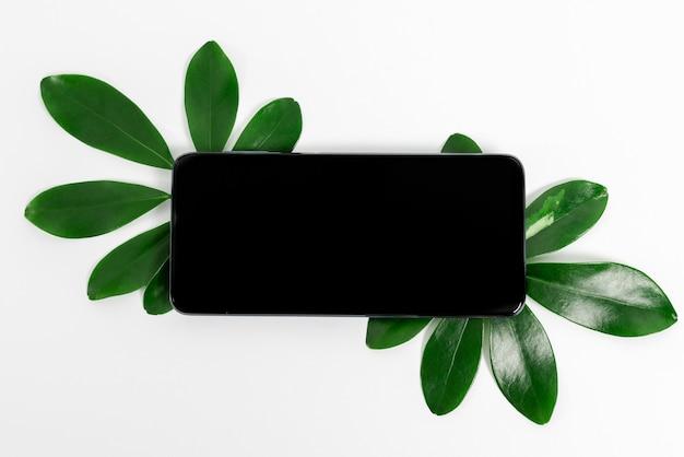 Идеи для презентаций на тему природы, демонстрирующие возобновляемые материалы, создающие устойчивые