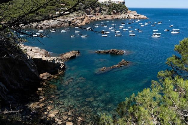 水と自然旅行の風景