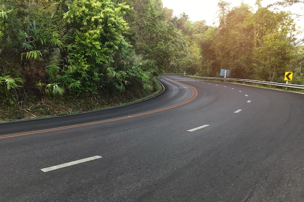 Neat asphalt road through in the forest