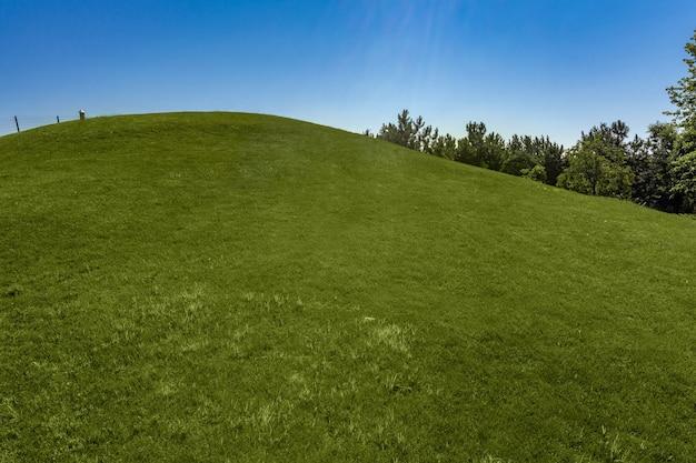 화창한 여름날 언덕에 깔끔하게 깎은 푸른 잔디