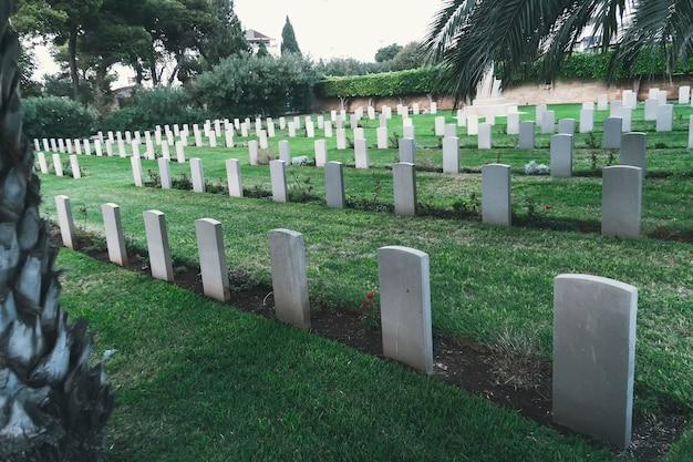 Некрополь раскинулся между пальмами и зеленой лужайкой. белые надгробия без имен и надписей на городском кладбище. ухоженный мемориал в честь погибших. кладбище в израиле.