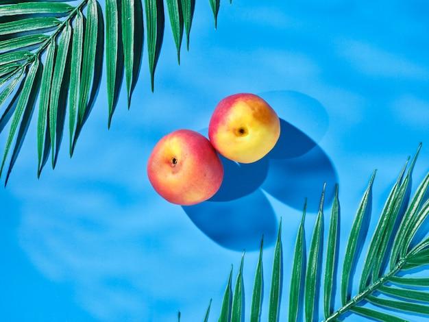 Нектарины (персики) на синем фоне