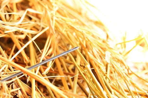 Иголка в стоге сена .