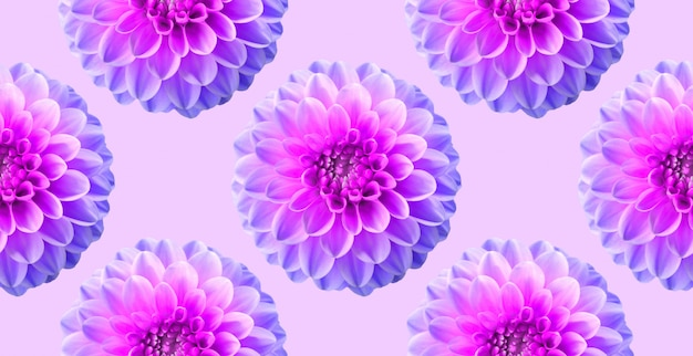 Neon chrysanthemum on pink color backdrop. pattern seamless. collage artistic illustration.