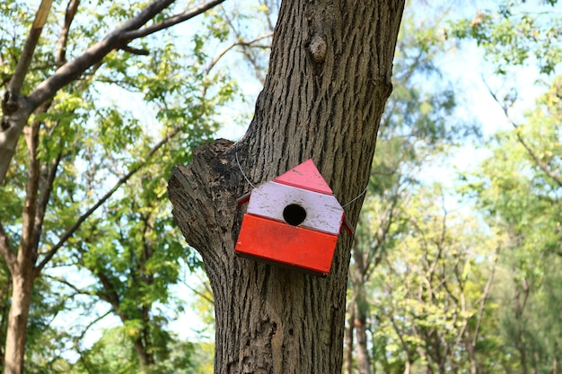 Nest box for bird in the park