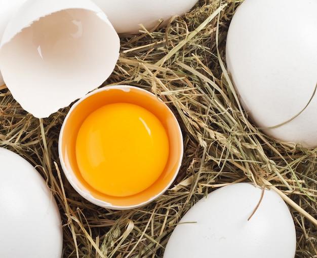 鶏肉と卵白の巣