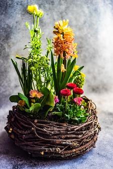 Гнездо интерьерная весенняя композиция с горшечными цветами