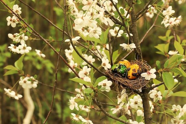 開花桜の木にイースターエッグと巣を作る非常に柔らかい選択的な焦点