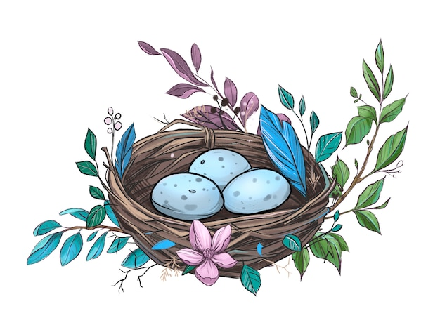 Nest with eggs. pencil illustration isolated on white background