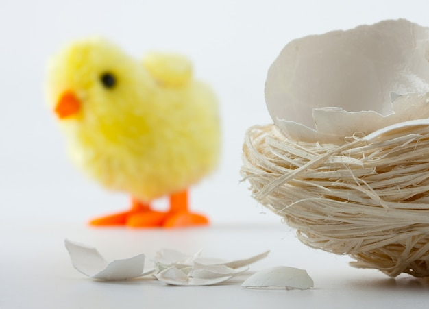 Nest with eggshell cracks and toy chicken