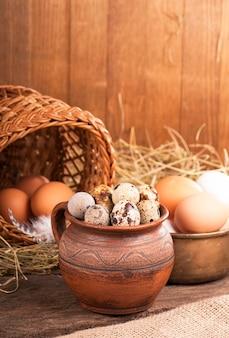 白い表面のキャンバスにウズラの卵と巣を作る