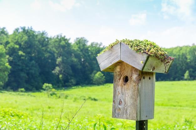 緑の牧草地に巣箱。