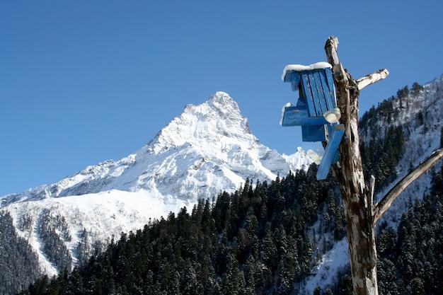 Скворечник, домик для птиц в горах