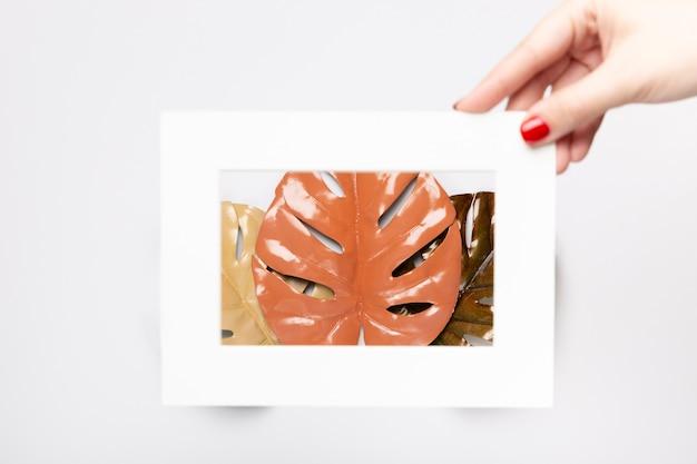 Neutral leaves in white frame