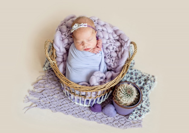 바구니에 새로 태어난 아이 프리미엄 사진